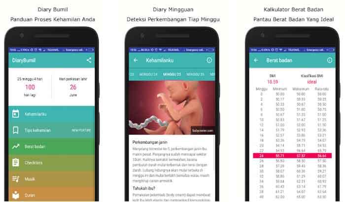 DiaryBumil - Panduan Kehamilan Lengkap