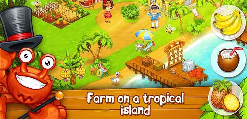 Farm Zoo Bay Island