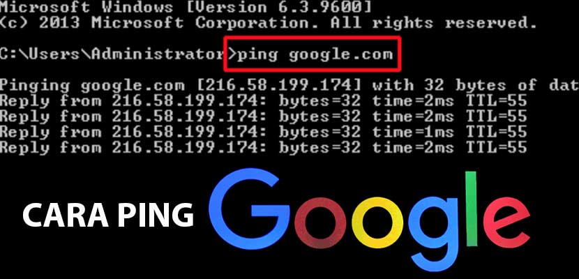 Cara Ping Google di PC Android