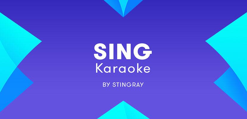 22. Sing Karaoke by Stingray