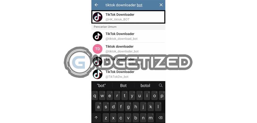 Cari Bot TikTok Downloader