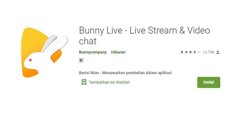 Bunny Live
