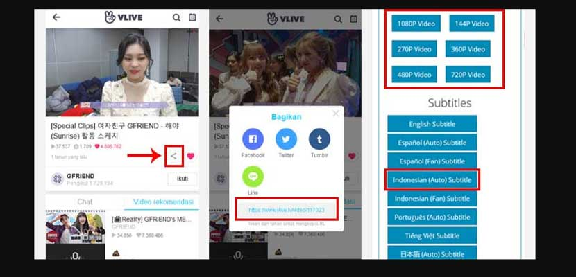 4. Download Video V Live di Lilsubs