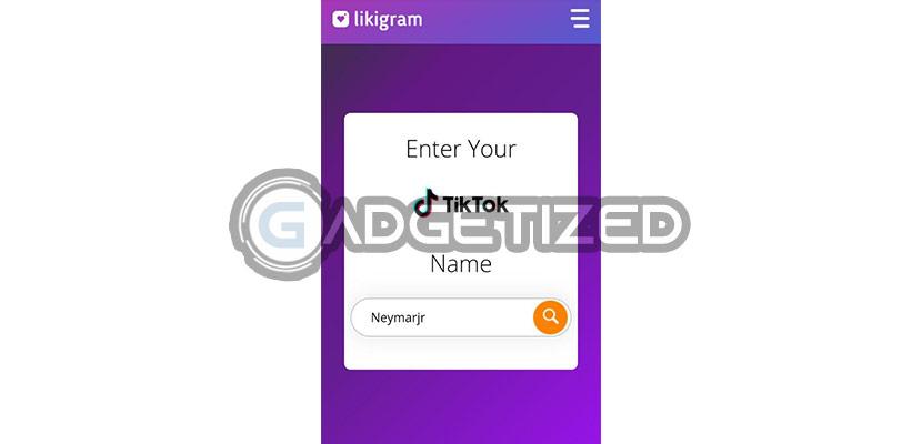 Masukkan ID atau Username TikTok